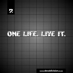 One Life. Live it Sticker - Cracked